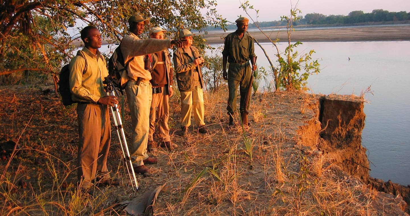Explore the South Luangwa National Park on a Game Walk when Staying at Island Bush Camp